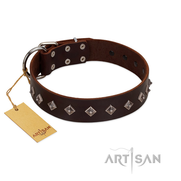Amazing decorations on natural leather collar for easy wearing your dog
