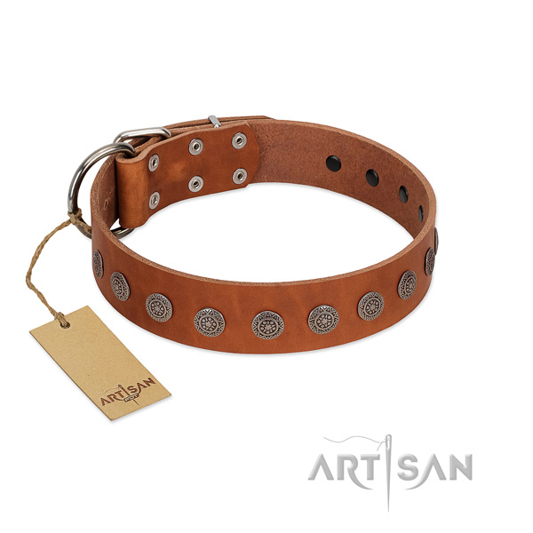 Unusual adornments on leather collar for comfortable wearing your canine