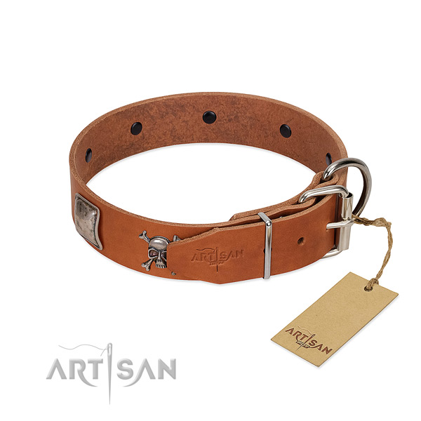 Amazing full grain leather collar for your beautiful canine