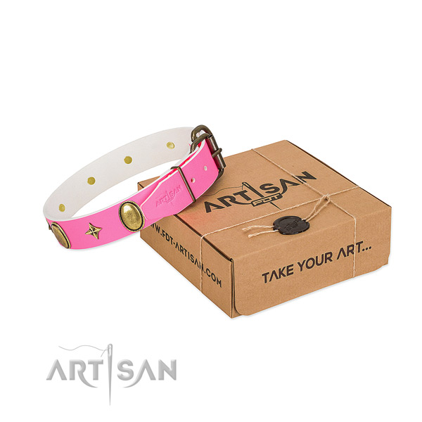 High quality leather dog collar with stylish studs