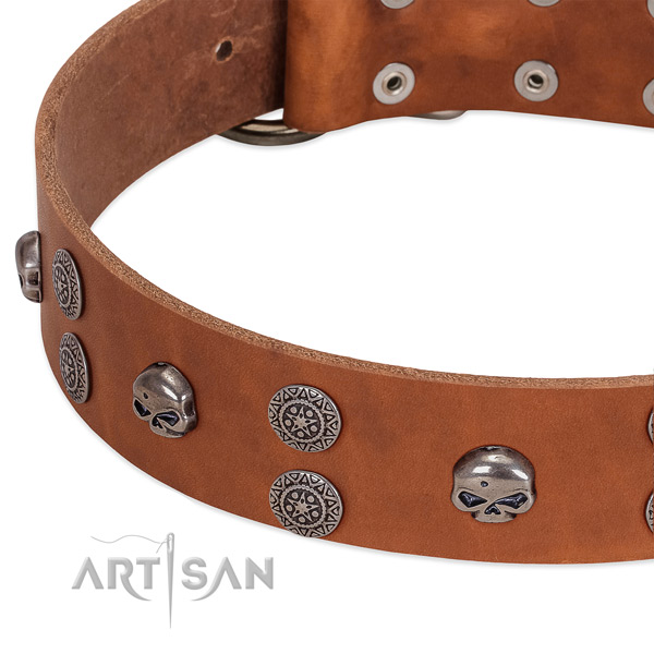 Soft full grain leather dog collar with trendy studs