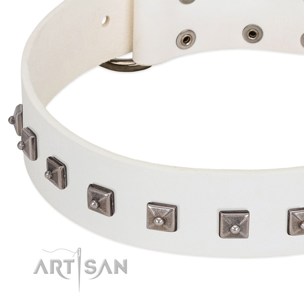 Soft full grain leather dog collar with impressive embellishments