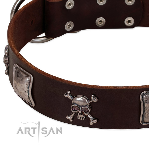 Corrosion proof adornments on full grain leather dog collar