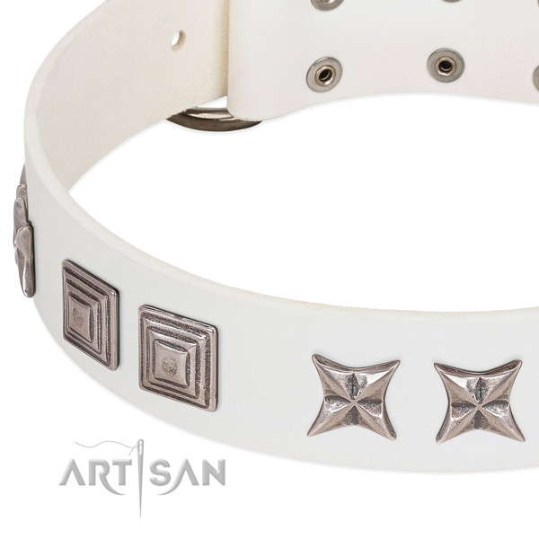 Stylish walking genuine leather dog collar with trendy decorations