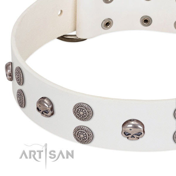 Soft to touch full grain leather dog collar with stylish adornments
