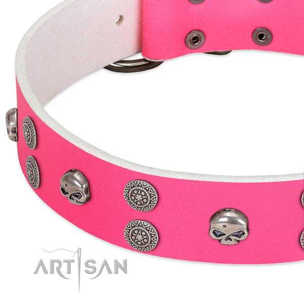 Flexible full grain natural leather dog collar with exceptional studs
