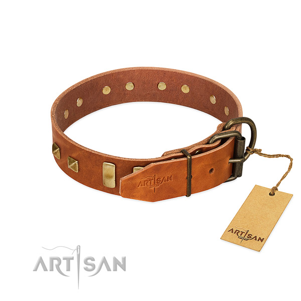 Top rate full grain genuine leather dog collar with corrosion proof hardware