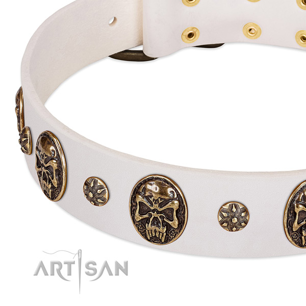 Corrosion proof adornments on full grain genuine leather dog collar for your dog