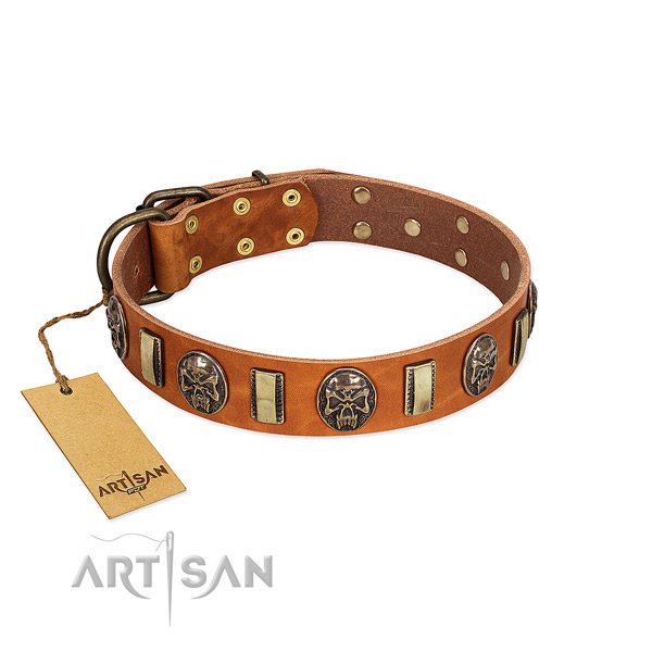 Trendy genuine leather dog collar for easy wearing