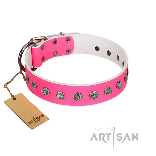 Top notch adornments on natural leather collar for everyday use your dog