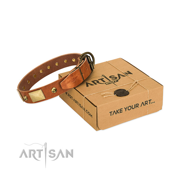 Flexible full grain leather collar with rust resistant studs for your canine