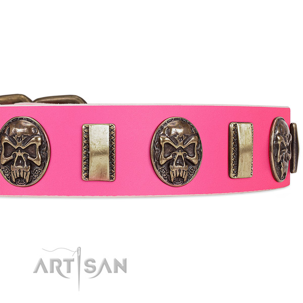Durable adornments on full grain genuine leather dog collar for your canine