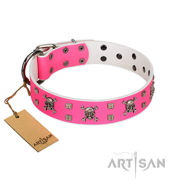 Significant genuine leather collar for your attractive dog