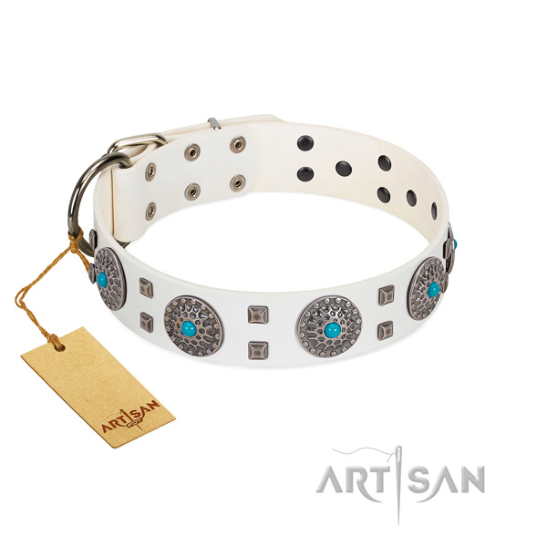Everyday walking leather dog collar with awesome adornments