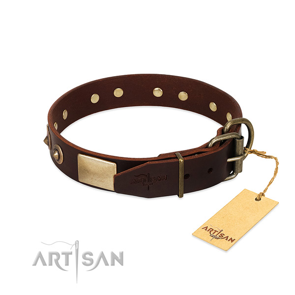 Rust resistant embellishments on everyday use dog collar
