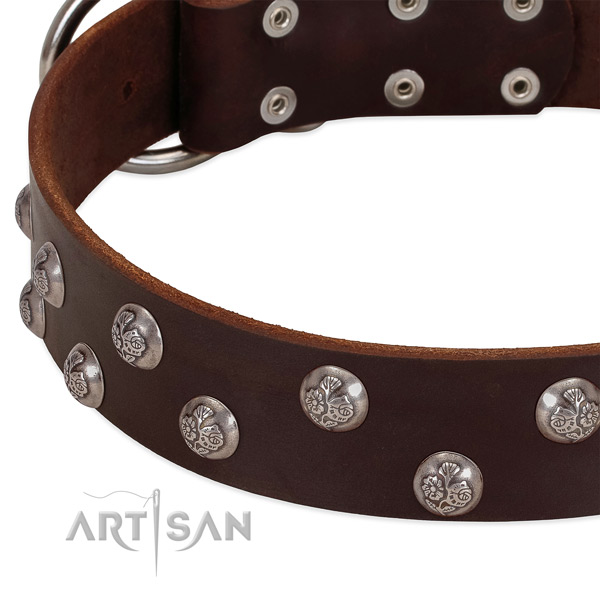 Full grain leather dog collar with reliable traditional buckle and adornments