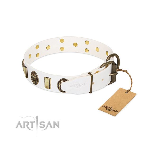 Rust resistant D-ring on full grain leather collar for fancy walking your dog