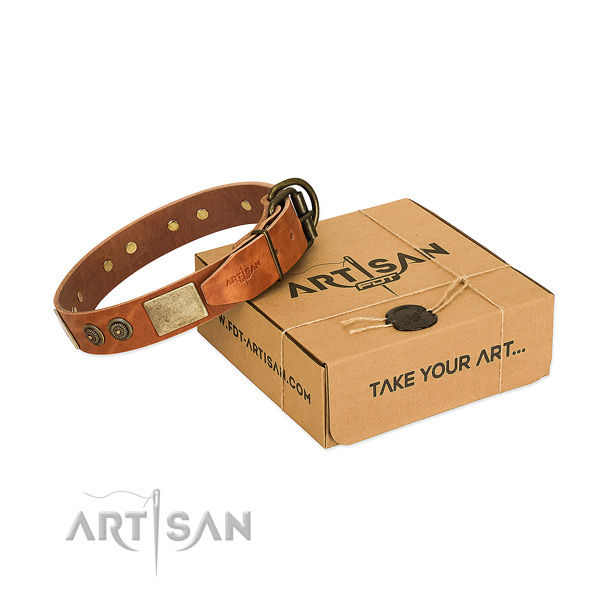 Durable traditional buckle on full grain genuine leather dog collar for everyday walking
