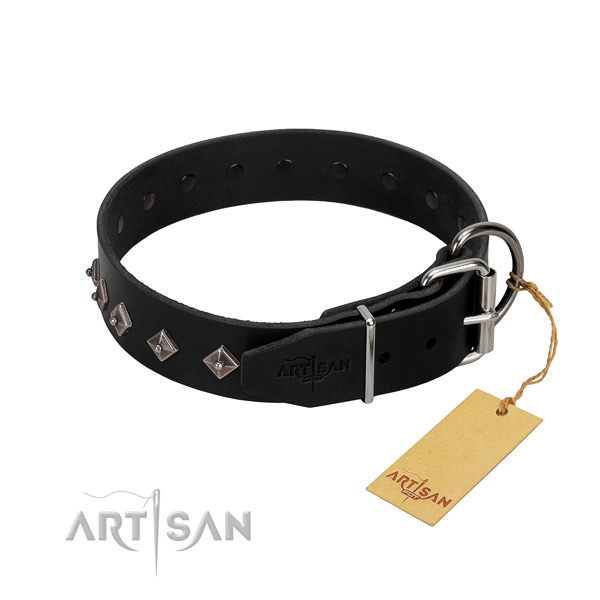 Genuine leather dog collar with impressive decorations for your canine