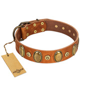 """Crystal Sand"" FDT Artisan Tan Leather Doberman Collar with Vintage Looking Oval and Round Studs"