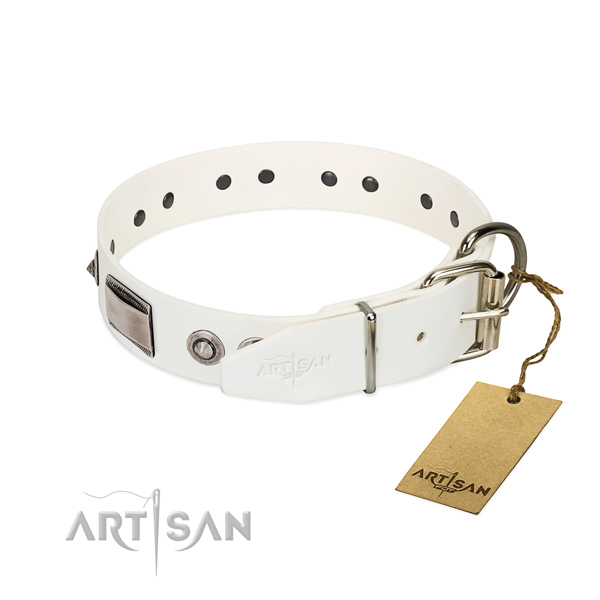 Handmade dog collar of natural leather with adornments