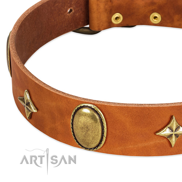 Quality genuine leather dog collar with rust-proof fittings