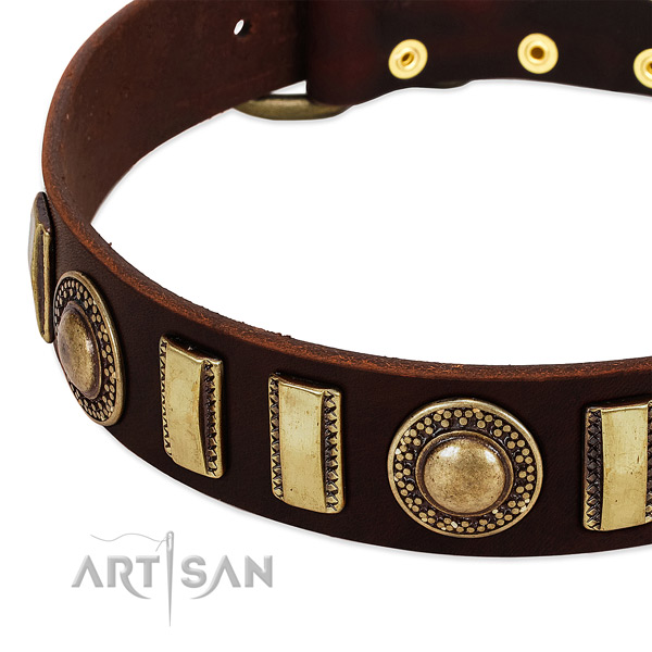 Best quality full grain leather dog collar with rust resistant fittings
