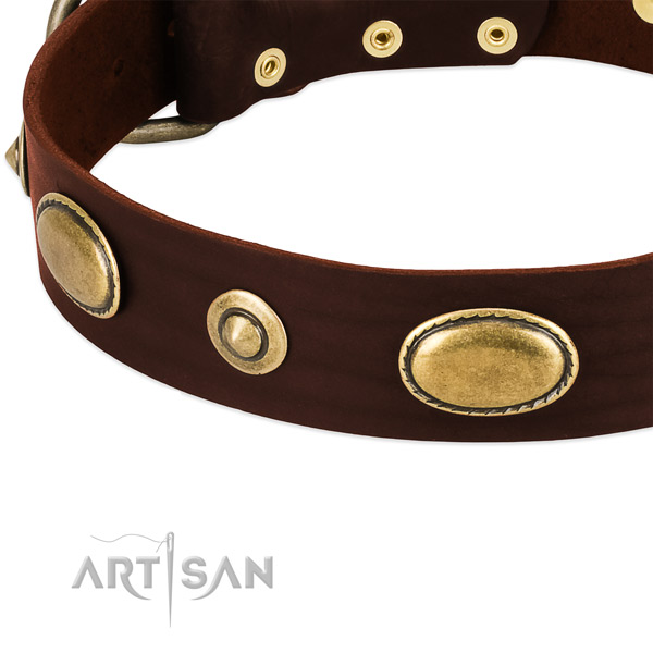 Durable buckle on genuine leather dog collar for your canine