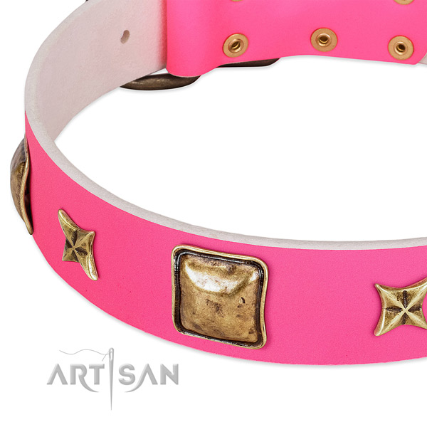 Genuine leather dog collar with awesome adornments