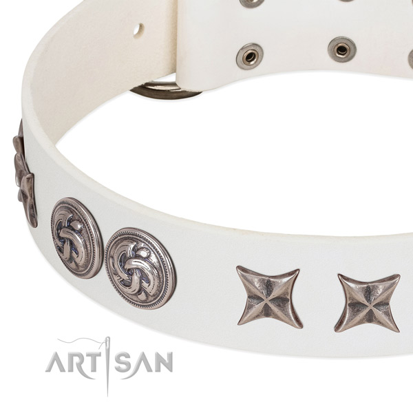 Full grain genuine leather collar with fashionable adornments for your pet