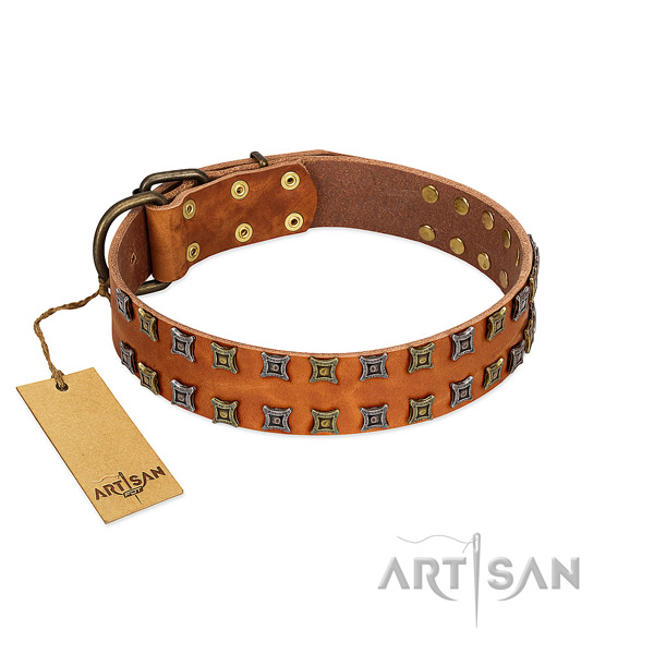 Soft full grain natural leather dog collar with decorations for your four-legged friend