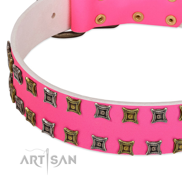 Natural leather dog collar with adornments for your impressive canine
