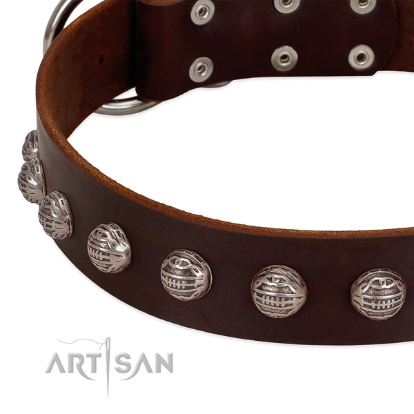 Full grain natural leather collar with amazing decorations for your doggie
