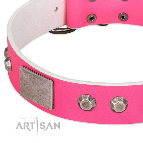 Soft natural leather dog collar with embellishments