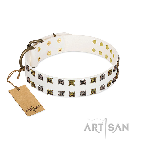 High quality genuine leather dog collar with embellishments for your dog