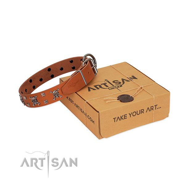 Top rate full grain leather dog collar with reliable D-ring