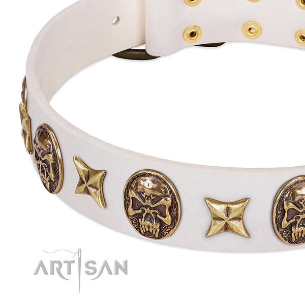 Unique dog collar handmade for your stylish pet