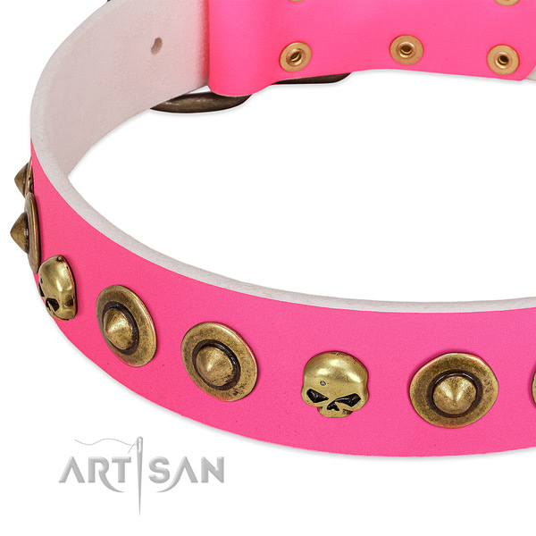 Significant embellishments on leather collar for your pet