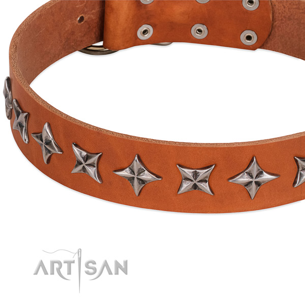 Comfortable wearing decorated dog collar of fine quality full grain genuine leather