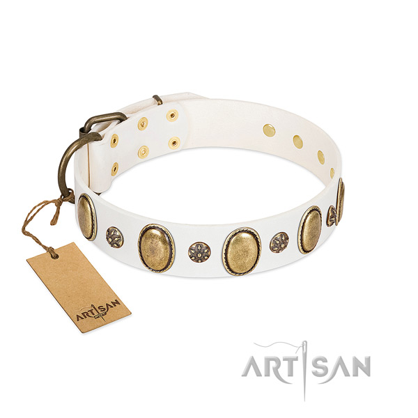 Everyday walking quality natural genuine leather dog collar with adornments