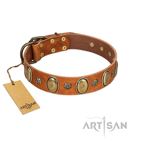 Everyday walking soft full grain genuine leather dog collar with adornments