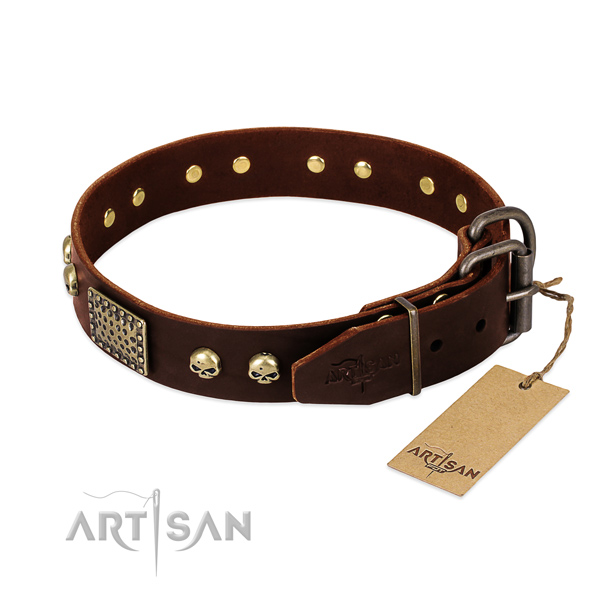 Reliable buckle on everyday use dog collar