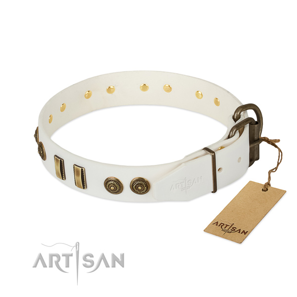 Corrosion proof buckle on natural leather dog collar for your canine
