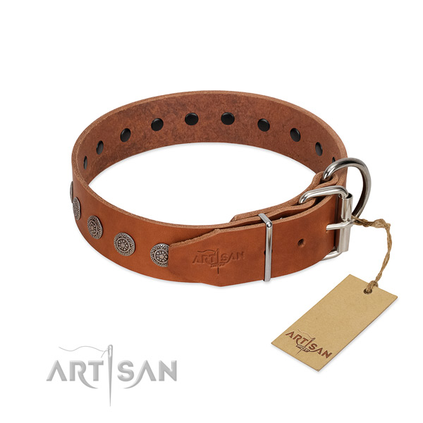 Significant studs on genuine leather collar for fancy walking your pet