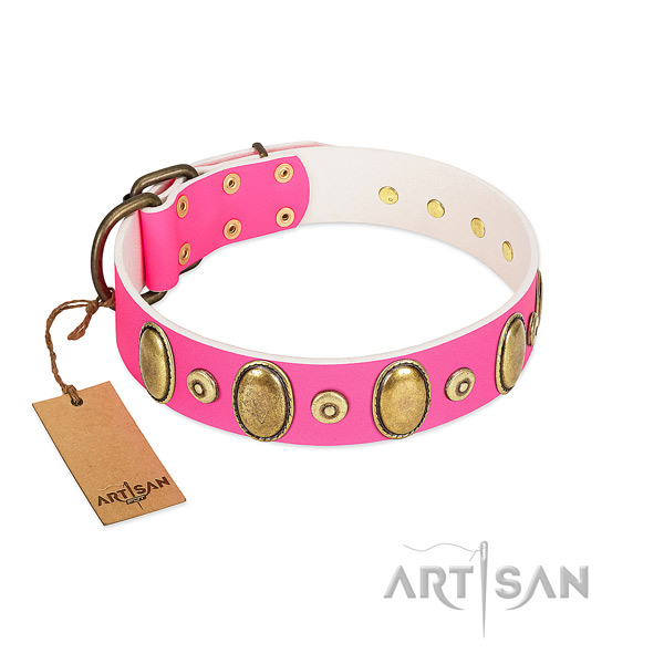 Durable full grain natural leather collar with corrosion proof studs for your doggie
