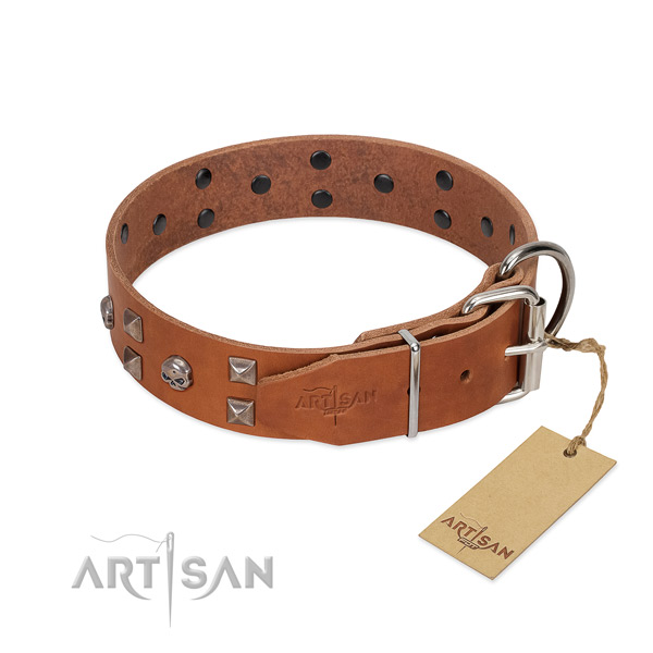 Trendy natural leather dog collar with durable hardware