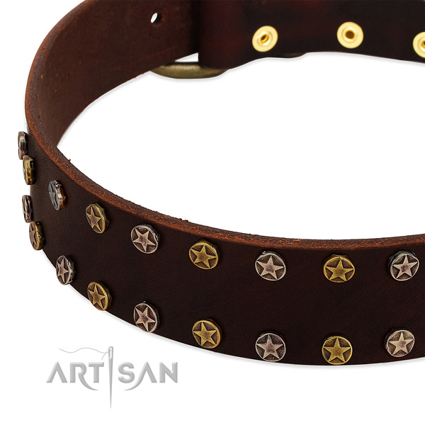 Fancy walking natural leather dog collar with unique decorations