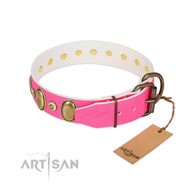 Corrosion proof embellishments on flexible natural leather dog collar