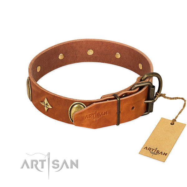 Top rate full grain genuine leather dog collar with exceptional studs