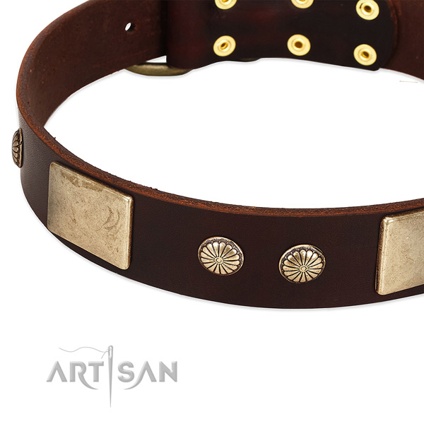 Corrosion resistant buckle on full grain genuine leather dog collar for your four-legged friend
